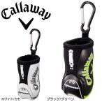 Sport Golf Bag Motif Ball Case 17 JM