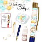 【手作りキット】ハーバリウムペン キラキラマリンセット♪  お好きなペンの色が選べます♪作り方説明書付き ボールペン 貝 海 巻貝