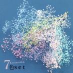 Yahoo!隠れ工房 GreenOcean【福袋】お買い得(^^♪ ハーバリウムに最適♪カスミ草7色セット[ハーバリューム,プリザーブドフラワー,花,ドライフラワー,ネイル]