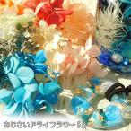 あじさいのプリザーブドフラワー  約5g   紫陽花  レジンクラフト  ハーバリウム 花材  2007 F46