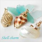 【卸売り】海からの優しい贈り物 天然の巻貝チャーム 10個
