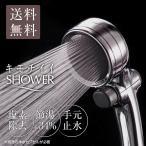 シャワーヘッド 節水 手元止水 浄水シャワー メタリックキモチイイシャワピタWT JSB022M takagi タカギ 安心の2年間保証