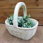 Yahoo!グリングリンセール ピュアバスケハンドルS ホワイト プランター【GF2788】/軽量グラスファイバー・ガーデニング・鉢・花や多肉の寄せ植えに