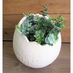 Yahoo!グリングリンセール★エッグスタンドM ホワイト プランター 【GF1753】/軽量グラスファイバー・ガーデニング・鉢・観葉植物・サボテン・花や多肉の寄せ植えに