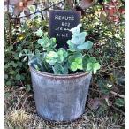 ブリキ ボーテサークルL(MH380)穴あきプランター /カントリー雑貨・ガーデニング・鉢・多肉植物・花・寄せ植え・観葉植物・サボテン