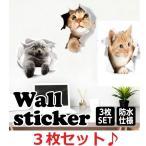 猫 シール ウォールステッカー 黒猫 三毛猫 ネコ 動物 アニマル 壁シール かわいい 3d トリックアート 写真 だまし絵 cat インテリアステッカー