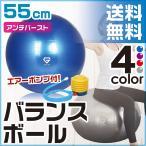 GronG バランスボール 55cm アンチバースト 耐荷重250kg 空気入れ フットポンプ付き ヨガボール エクササイズボール