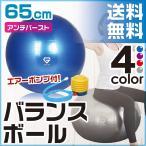 GronG バランスボール 65cm ヨガボール エクササイズボール アンチバースト 耐荷重250kg 空気入れ フットポンプ付き