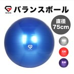 GronG バランスボール 75cm アンチバースト 耐荷重250kg 空気入れ フットポンプ付き ヨガボール エクササイズボール