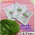 【メール便OK】♪お花長持ち♪キープフラワー10ml 1袋 小袋使いきりサイズ♪ 簡単切花の活力サプリメント 50倍希釈