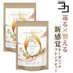 生姜 ルイボスティー 菊芋 巡りChaCha 2個セット 80包 農薬不使用 ノンカフェイン ブレンドティー 送料無料
