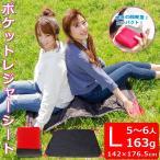 ポケットレジャーシート  Lサイズ 5〜6人用 コンパクト ピクニック