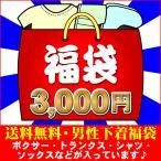 メンズインナー 3,000福袋(L) BVD グンゼ BODYWILD