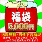 メンズインナー 5,000福袋(L) BVD グンゼ BODYWILD etc.