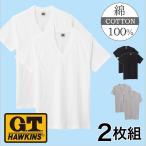 グンゼ VネックTシャツ2枚セット GTホーキンス HK10152