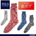 GUNZE(グンゼ) / POLO BCS / ソックス(紳士) / PBC155