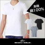 bodywild vネック GUNZE(グンゼ)/BODY WILD(ボディワイルド)/VネックTシャツ(V首)(紳士)/BWB415N