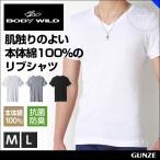 綿100% リブ BODYWILD ボディワイルド vネックtシャツ GUNZE BODY WILD グンゼ ボディーワイルド 肌着 メンズ(V首)(紳士)/年間シャツ/BWJ415