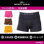 3D 立体 成型 ボクサーパンツ グンゼ BODY WILD GUNZE ボディワイルド ボクサーブリーフ(前とじ)(紳士)/BWS876G