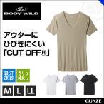 GUNZE(グンゼ)/BODY WILD(ボディワイルド)/VネックTシャツ(V首)(紳士)/年間シャツ/BWY315