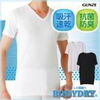 セール 特価 GUNZE(グンゼ)/BODYDRY(ボディドライ)/VネックTシャツ(V首)(紳士)/CL1215H