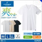 GUNZE(グンゼ)/COOLMAGIC(クールマジック)/【鹿の子素材】VネックTシャツ(V首)(紳士)/春夏シャツ/MC1515P