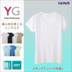 グンゼ YG Tシャツ V首 GUNZE 男性下着 吸汗速乾 ドライ DRY&DEO Vネック Tシャツ 半袖 (短袖)(紳士)/YV0117
