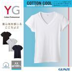 グンゼ YG Tシャツ V首 GUNZE 男性下着 綿100 涼感 コットンクール Vネック(短袖)(紳士)/YV0317