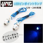 LEDピンポイントランプ 青 (ナンバーボルト) 12V/24V共通