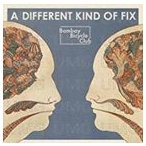 BOMBAY BICYCLE CLUB ボンベイ・バイシクル・クラブ/DIFFERENT KIND OF FIX 輸入盤 CD