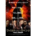 ワイルド・フォー・リベンジ DVD