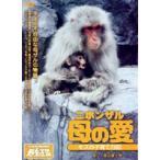 ニホンザル 母の愛-モズの子育て日記- DVD