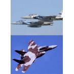 Aggressor:アグレッサー 新田原基地航空祭 F-15デモフライト 2010年〜2015年 [DVD]
