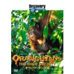 ディスカバリーチャンネル オランウータンの森 DVD