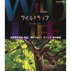 ワイルドライフ 世界自然遺産 知床 角がつなぐ!エゾシカ 命の物語 Blu-ray