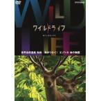 ワイルドライフ 世界自然遺産 知床 角がつなぐ!エゾシカ 命の物語 DVD