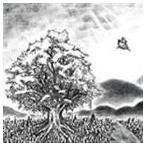 BUMP OF CHICKEN / ユグドラシル [CD]