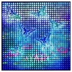 AYABIE/流星(初回限定盤B/CD+DVD ※Lilia Music Clip収録) CD