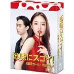 地味にスゴイ   校閲ガール 河野悦子 DVD-BOX