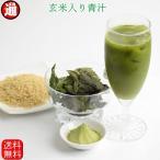 玄米茶 送料無料 玄米君桑茶 10本 お試し 便利なスティック入り 桑茶 粉末 桑茶パウダー  玄米微粉末 無添加 無着色 ポイント消化 送料無 食品 お試し 玄米