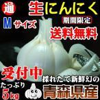 生にんにく M玉 5kg 送料無料 青森県産 新物29年度産 M玉サイズ 約75玉