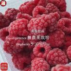 ラズベリー 冷凍 果実 送料無料 100g×4パック 無農薬栽培 無添加・無着色 国産  木苺 キイチゴ フランボワーズ  冷凍フルーツ