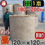 稲ワラ/藁/敷わら 1本180kg-200kg 干し草/土づくり/クッション材/ぼかし堆肥/雑草対策/マルチング/土壌改良剤
