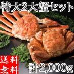 カニ セット 二大蟹 計2kg (ズワイガニ1尾 毛ガニ1尾) 姿 特大 ボイル 冷凍 蟹味噌 北海道加工 詰め合わせ