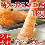 ボタンエビ 刺身 500g×2パック 計1kg 子持ち 卵付き 特大 約13〜19尾 ぼたん海老 送料無料