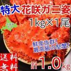 花蟹 - 花咲ガニ 約1kg 特大 姿 ボイル 冷凍 北海道加工 送料無料