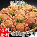 毛ガニ 4kg (10-12尾入) 北海道産 ギフト 浜茹で ボイル 冷凍 カニ味噌 3特 4特 良品 選別 厳選 毛蟹 お取り寄せ