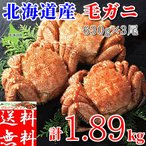 毛蟹 - 毛ガニ 計1.89kg前後 (約630g×3尾) 北海道産 蟹味噌 カニ 訳ありでない 良品選別済 お取り寄せ 大型 ギフト 送料無料