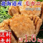 年末可 毛ガニ (毛蟹 かに カニ) 姿 ボイル 特大 2尾入 計1,6kg前後 冷凍 北海道産 送料無料