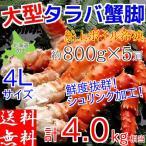 タラバガニ 足 4kg (800g×5肩) ボイル 冷凍 ギフト 4L 蟹 カニ 北海道加工 堅蟹 お取り寄せ たらばがに